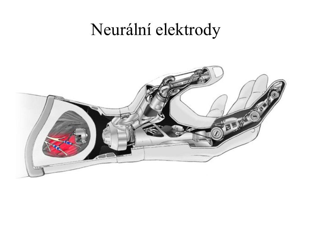 Neurální elektrody