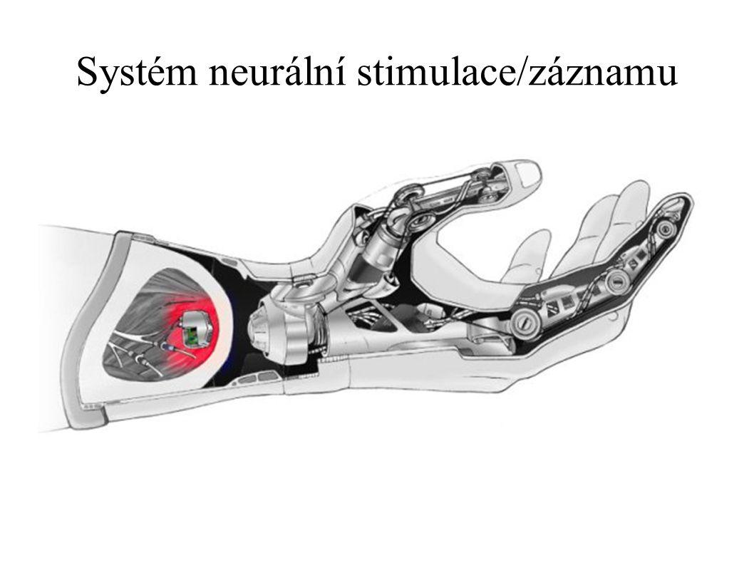 Systém neurální stimulace/záznamu