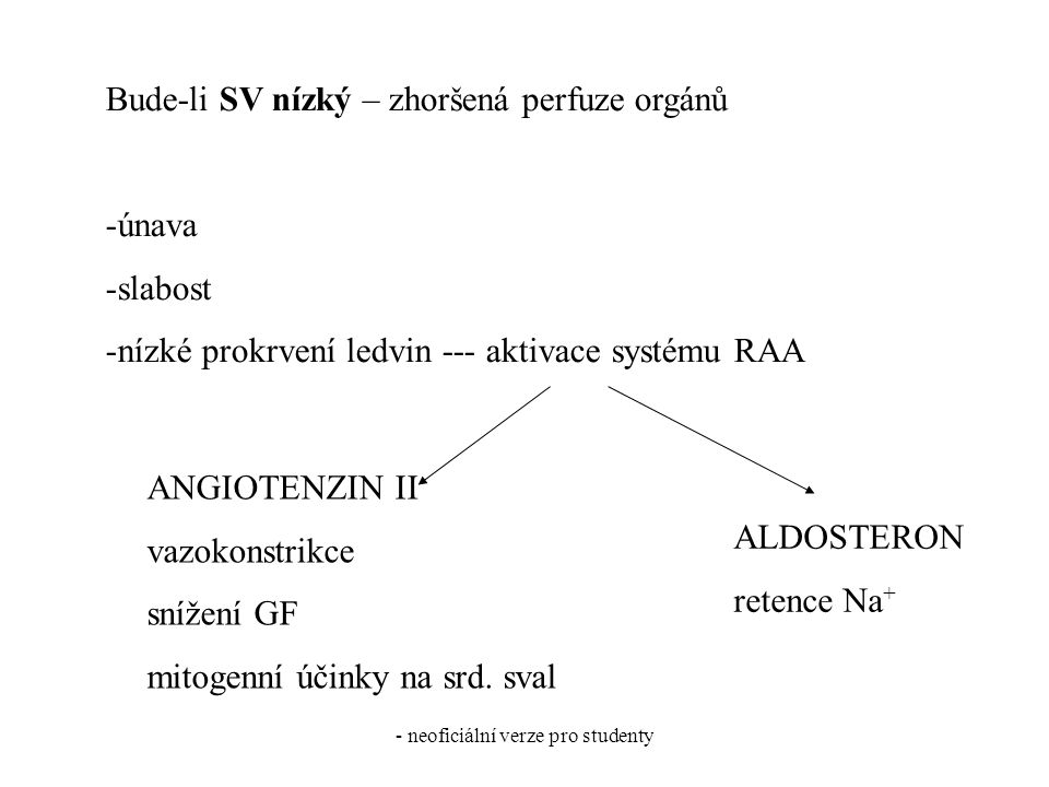 - neoficiální verze pro studenty Bude-li SV nízký – zhoršená perfuze orgánů -únava -slabost -nízké prokrvení ledvin --- aktivace systému RAA ALDOSTERON retence Na + ANGIOTENZIN II vazokonstrikce snížení GF mitogenní účinky na srd.