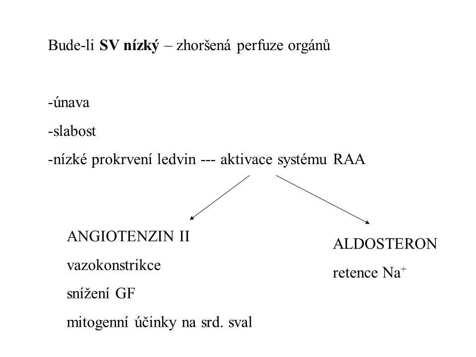Bude-li SV nízký – zhoršená perfuze orgánů -únava -slabost -nízké prokrvení ledvin --- aktivace systému RAA ALDOSTERON retence Na + ANGIOTENZIN II vaz