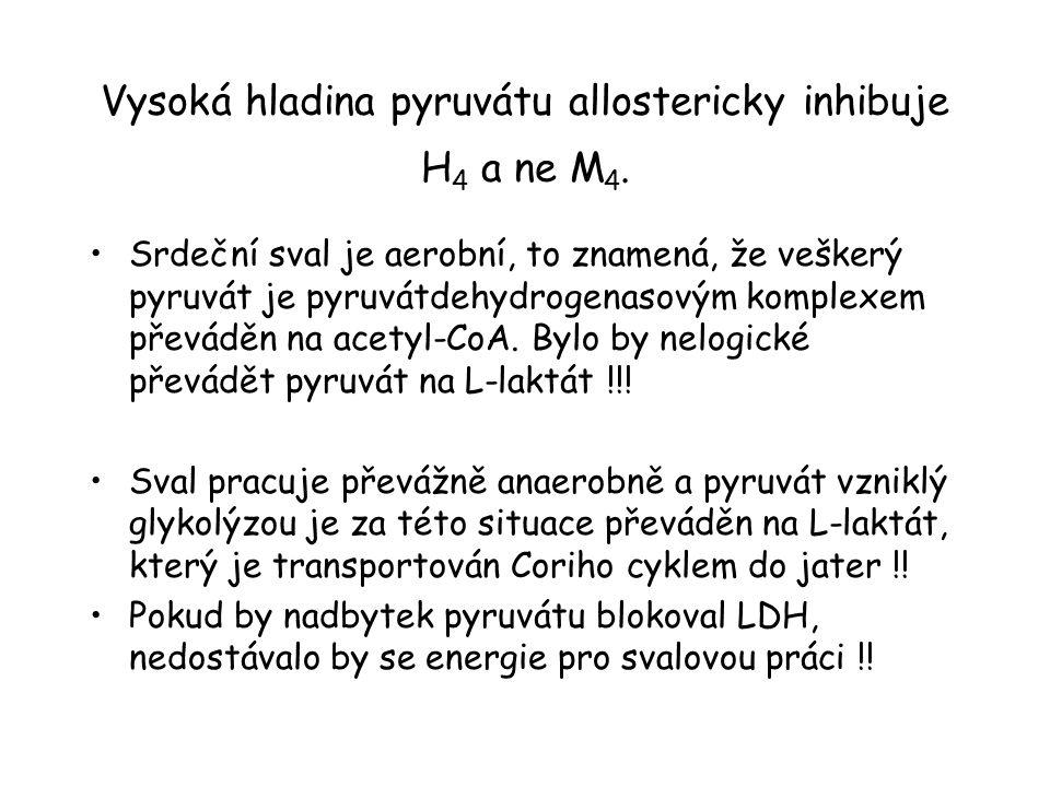 Vysoká hladina pyruvátu allostericky inhibuje H 4 a ne M 4. Srdeční sval je aerobní, to znamená, že veškerý pyruvát je pyruvátdehydrogenasovým komplex