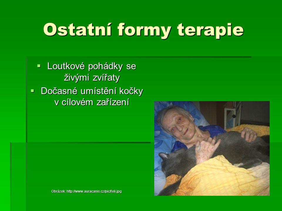 Ostatní formy terapie  Loutkové pohádky se živými zvířaty  Dočasné umístění kočky v cílovém zařízení Obrázek: http://www.auracanis.cz/pic/feli.jpg