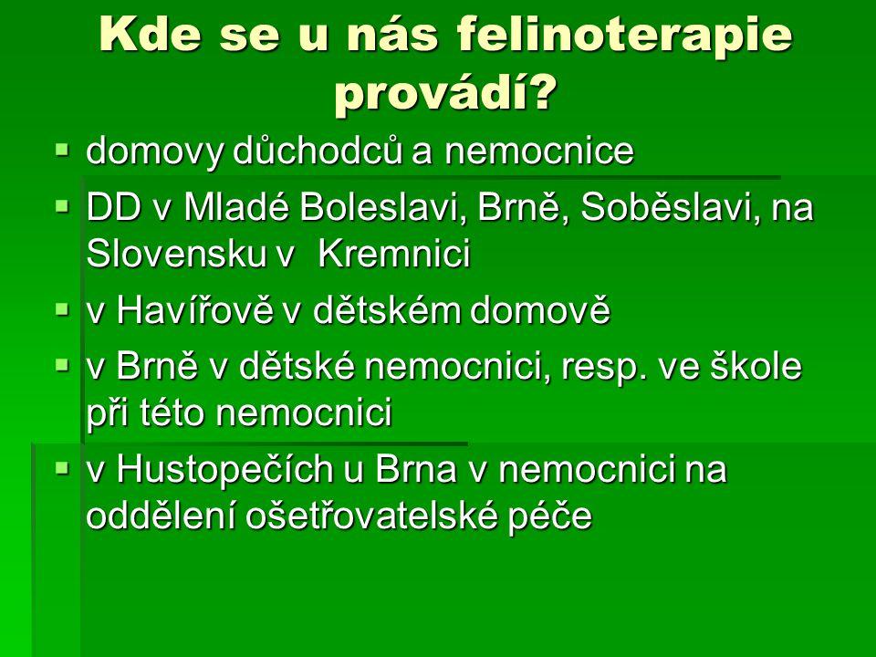 Kde se u nás felinoterapie provádí?  domovy důchodců a nemocnice  DD v Mladé Boleslavi, Brně, Soběslavi, na Slovensku v Kremnici  v Havířově v děts