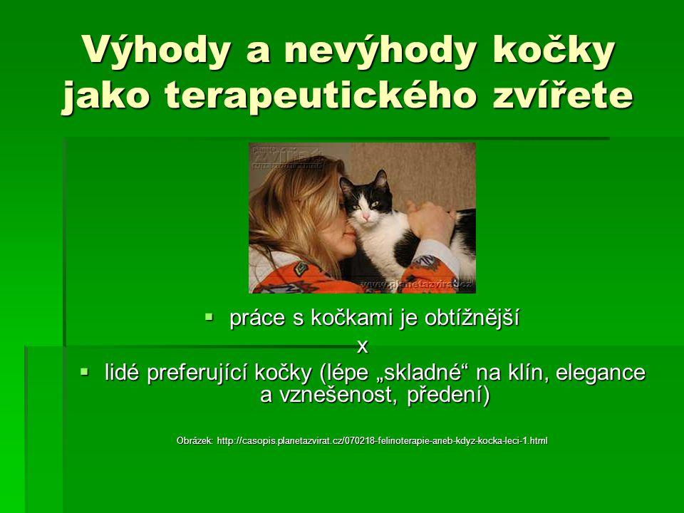 """Výhody a nevýhody kočky jako terapeutického zvířete  práce s kočkami je obtížnější x  lidé preferující kočky (lépe """"skladné"""" na klín, elegance a vzn"""