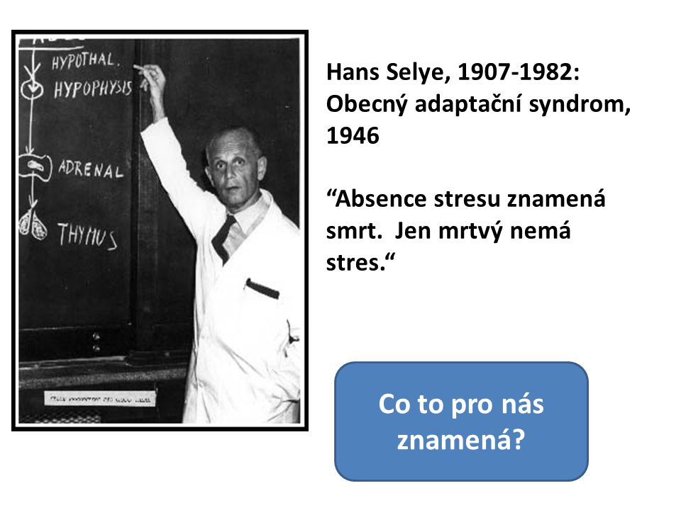 """Hans Selye, 1907-1982: Obecný adaptační syndrom, 1946 """"Absence stresu znamená smrt. Jen mrtvý nemá stres."""" Co to pro nás znamená?"""
