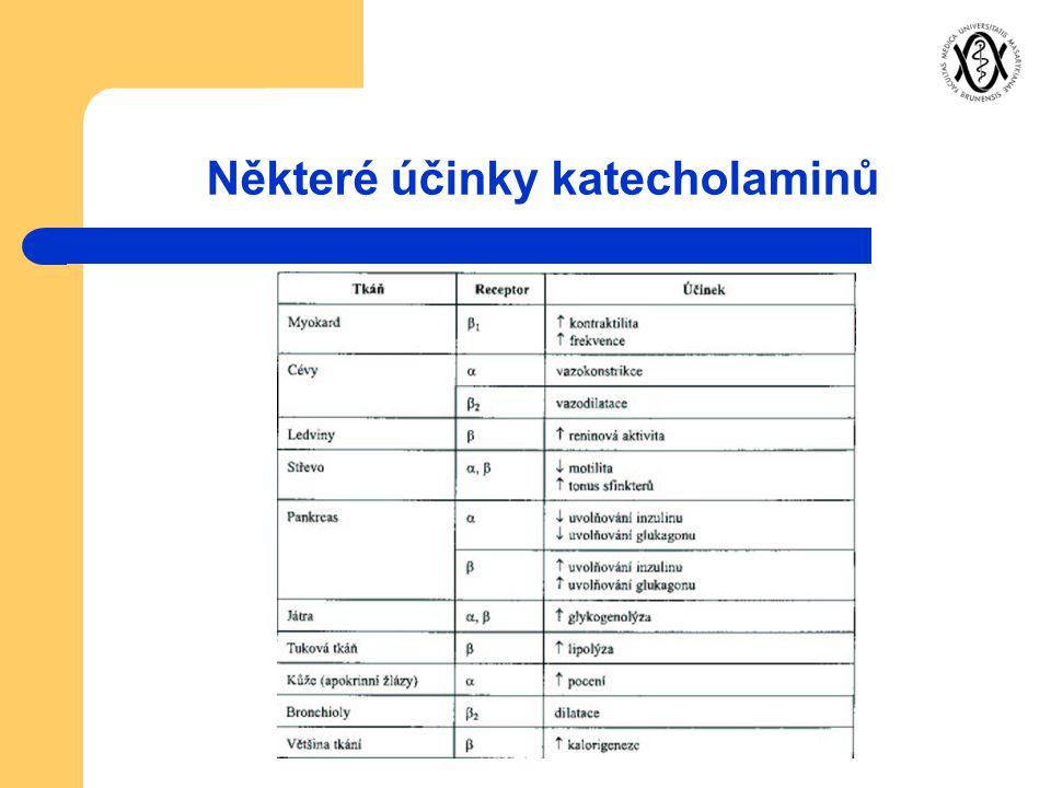 Některé účinky katecholaminů