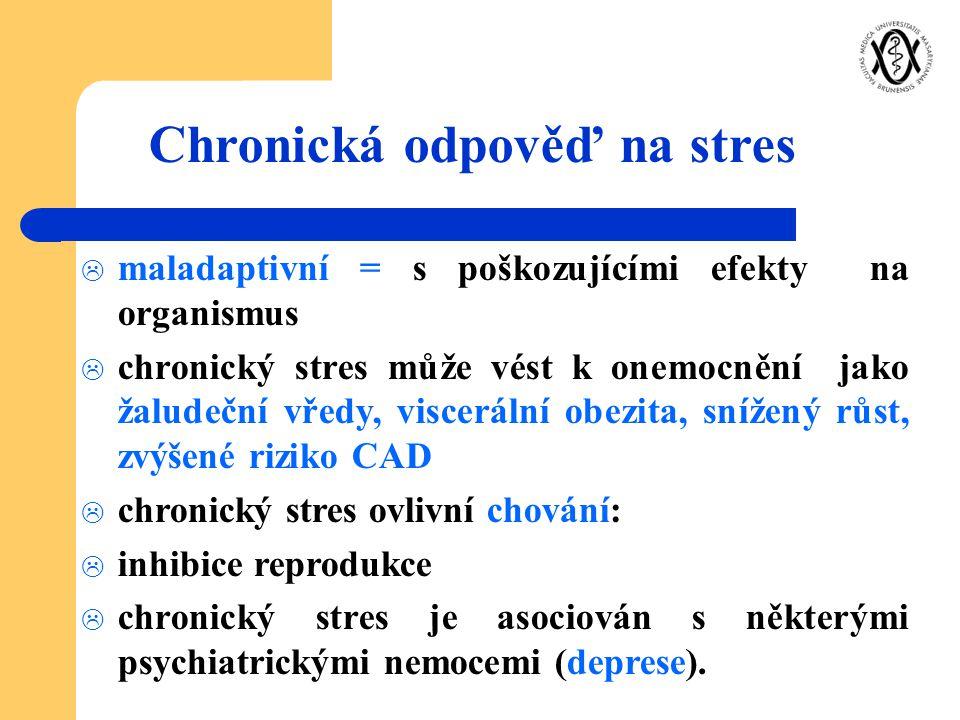  maladaptivní = s poškozujícími efekty na organismus  chronický stres může vést k onemocnění jako žaludeční vředy, viscerální obezita, snížený růst,