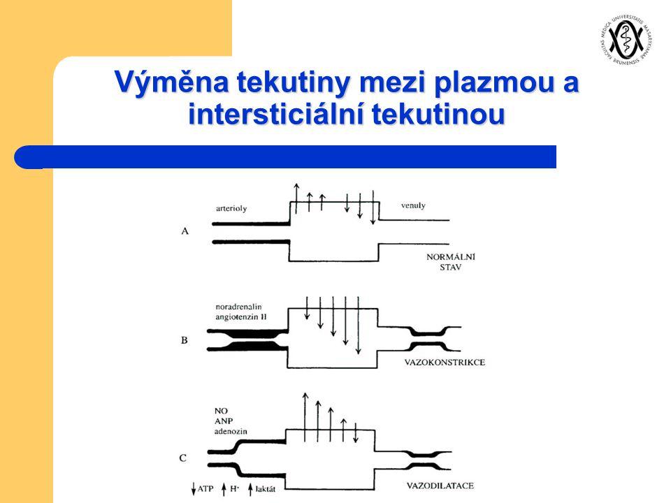 Výměna tekutiny mezi plazmou a intersticiální tekutinou