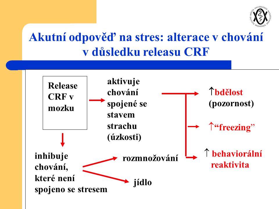 """Release CRF v mozku aktivuje chování spojené se stavem strachu (úzkosti)  bdělost (pozornost)  """"freezing""""  behaviorální reaktivita inhibuje chování"""