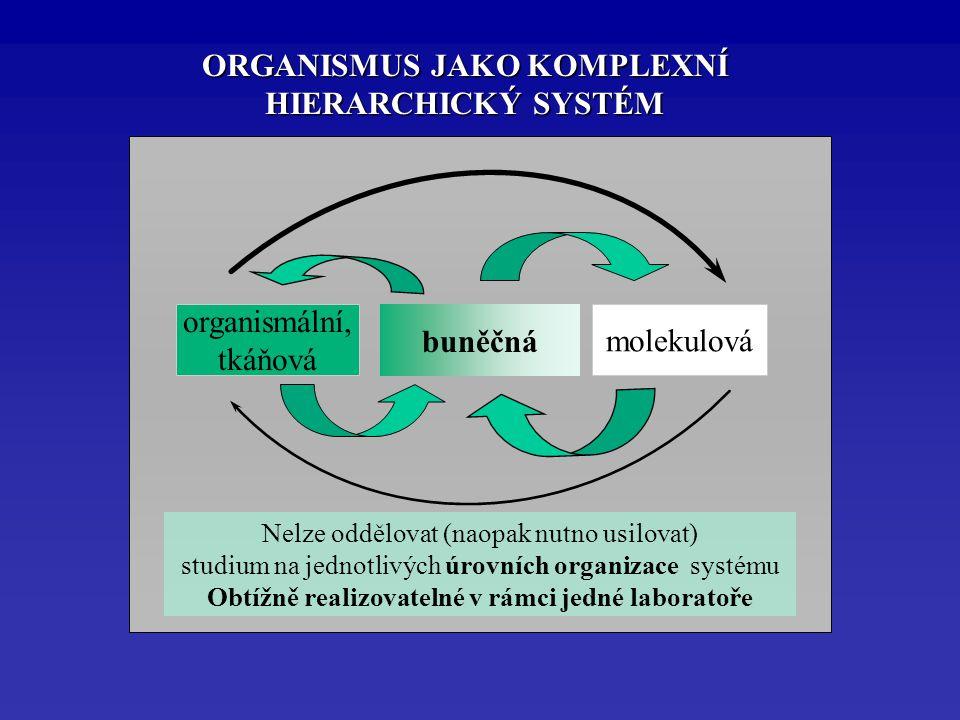 organismální, tkáňová molekulová buněčná Nelze oddělovat (naopak nutno usilovat) studium na jednotlivých úrovních organizace systému Obtížně realizovatelné v rámci jedné laboratoře ORGANISMUS JAKO KOMPLEXNÍ HIERARCHICKÝ SYSTÉM