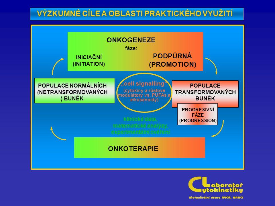 """POPULACE NORMÁLNÍCH (NETRANSFORMOVANÝCH ) BUNĚK ONKOGENEZE fáze: INICIAČNÍ (INITIATION) PODPŮRNÁ (PROMOTION) """"cell signalling (cytokiny a růstové modulátory vs."""