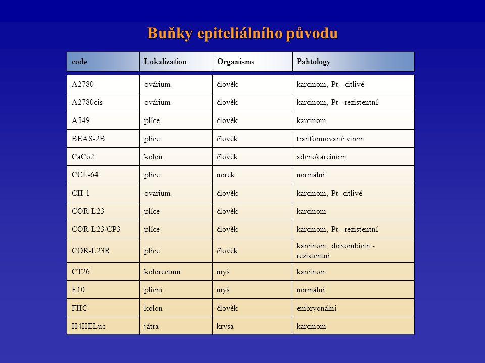 Buňky epiteliálního původu PahtologyOrganismsLokalizationcode karcinomkrysajátraH4IIELuc embryonálníčlověkkolonFHC normálnímyšplicníE10 karcinommyškolorectumCT26 karcinom, doxorubicin - rezistentní člověkplíceCOR-L23R karcinom, Pt - rezistentníčlověkplíceCOR-L23/CP3 karcinomčlověkplíceCOR-L23 karcinom, Pt- citlivéčlověkovariumCH-1 normálnínorekplíceCCL-64 adenokarcinomčlověkkolonCaCo2 tranformované viremčlověkplíceBEAS-2B karcinomčlověkplíceA549 karcinom, Pt - rezistentníčlověkováriumA2780cis karcinom, Pt - citlivéčlověkováriumA2780