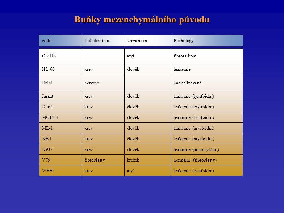 PathologyOrganismLokalizationcode Buňky mezenchymálního původu leukemie (lymfoidní)myškrevWEHI normální (fibroblasty)křečekfibroblastyV79 leukemie (monocytární)člověkkrevU937 leukemie (myeloidní)člověkkrevNB4 leukemie (myeloidní)člověkkrevML-1 leukemie (lymfoidní)člověkkrevMOLT-4 leukemie (erytroidní)člověkkrevK562 leukemie (lymfoidní)člověkkrevJurkat imortalizovanénervovéIMM leukemiečlověkkrevHL-60 fibrosarkommyšG5:113