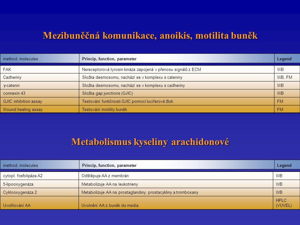 Mezibuněčná komunikace, anoikis, motilita buněk LegendPrincip, function, parametermethod, molecules Metabolismus kyseliny arachidonové LegendPrincip, function, parametermethod, molecules FAKNereceptorová tyrosin kináza zapojená v přenosu signálů z ECMWB CadherinySložka desmosomu, nachází se v komplexu s cateninyWB, FM  -catenin Složka desmosomu, nachází se v komplexu s cadherinyWB connexin 43Složka gap junctions (GJIC)WB GJIC inhibition assayTestování funkčnosti GJIC pomocí luciferové žlutiFM Wound healing assayTestování motility buněkFM cytopl.