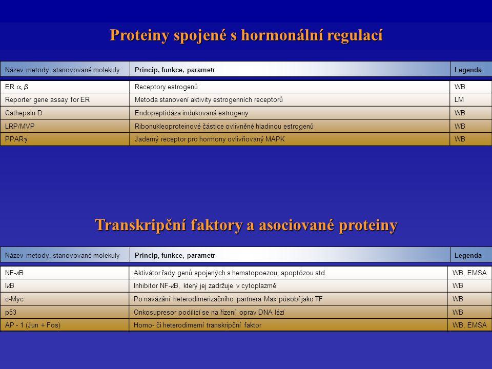 Proteiny spojené s hormonální regulací LegendaPrincip, funkce, parametrNázev metody, stanovované molekuly LegendaPrincip, funkce, parametrNázev metody, stanovované molekuly Transkripční faktory a asociované proteiny ER  Receptory estrogenůWB Reporter gene assay for ERMetoda stanovení aktivity estrogenních receptorůLM Cathepsin DEndopeptidáza indukovaná estrogenyWB LRP/MVPRibonukleoproteinové částice ovlivněné hladinou estrogenůWB PPAR  Jaderný receptor pro hormony ovlivňovaný MAPKWB NF-  B Aktivátor řady genů spojených s hematopoezou, apoptózou atd.WB, EMSA IBIBInhibitor NF-  B, který jej zadržuje v cytoplazmě WB c-MycPo navázání heterodimerizačního partnera Max působí jako TFWB p53Onkosupresor podílící se na řízení oprav DNA lézíWB AP - 1 (Jun + Fos)Homo- či heterodimerní transkripční faktorWB, EMSA
