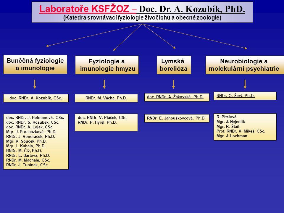 Buněčná fyziologie a imunologie doc. RNDr. A. Kozubík, CSc.