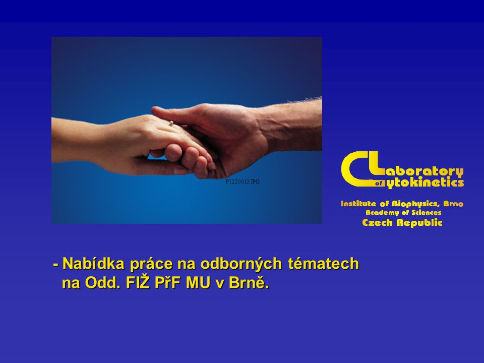 P1220013.JPG - Nabídka práce na odborných tématech na Odd.