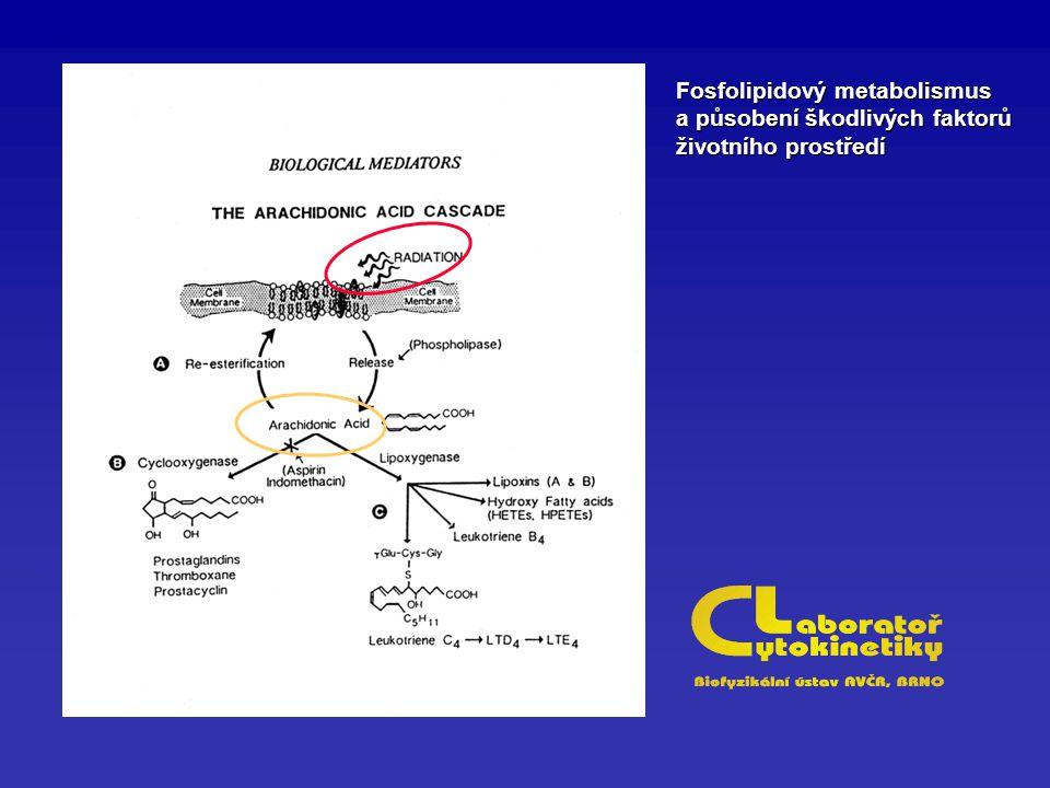 Fosfolipidový metabolismus a působení škodlivých faktorů životního prostředí