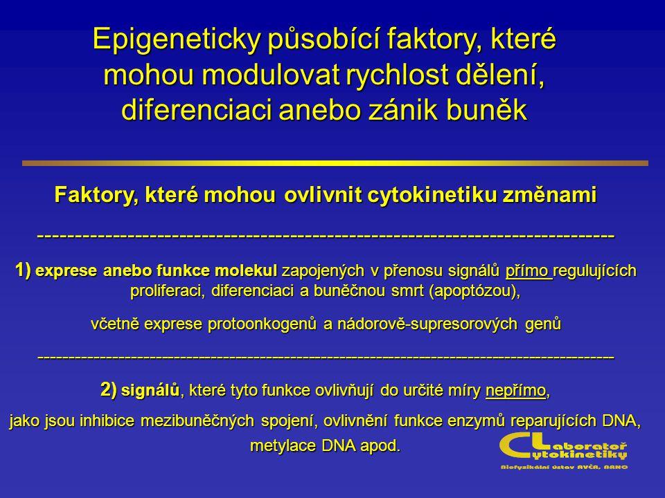 Epigeneticky působící faktory, které mohou modulovat rychlost dělení, diferenciaci anebo zánik buněk Faktory, které mohou ovlivnit cytokinetiku změnami ------------------------------------------------------------------------------ 1) exprese anebo funkce molekul zapojených v přenosu signálů přímo regulujících proliferaci, diferenciaci a buněčnou smrt (apoptózou), včetně exprese protoonkogenů a nádorově-supresorových genů ---------------------------------------------------------------------------------------------- 2) signálů, které tyto funkce ovlivňují do určité míry nepřímo, jako jsou inhibice mezibuněčných spojení, ovlivnění funkce enzymů reparujících DNA, metylace DNA apod.