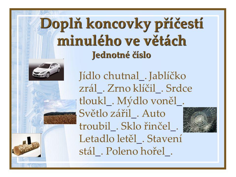Doplň koncovky příčestí minulého ve větách Jednotné číslo Jídlo chutnal_.