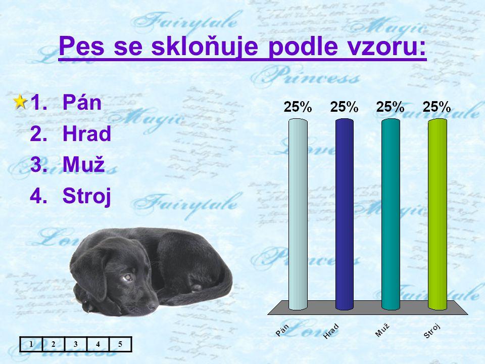 Pes se skloňuje podle vzoru: 1.Pán 2.Hrad 3.Muž 4.Stroj 12345