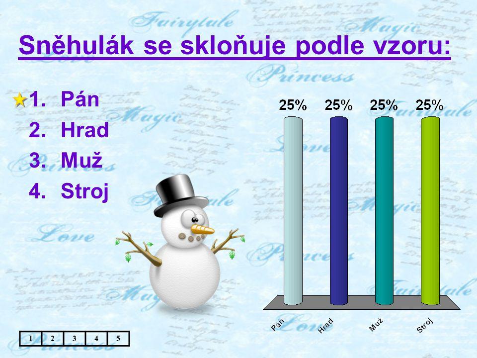 Sněhulák se skloňuje podle vzoru: 1.Pán 2.Hrad 3.Muž 4.Stroj 12345
