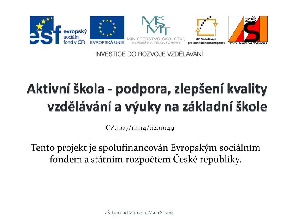 Tento projekt je spolufinancován Evropským sociálním fondem a státním rozpočtem České republiky. ZŠ Týn nad Vltavou, Malá Strana CZ.1.07/1.1.14/02.004