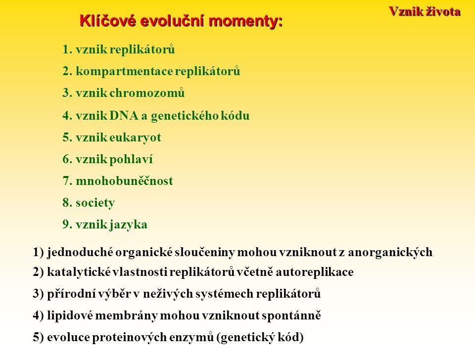Vznik života Klíčové evoluční momenty: 1. vznik replikátorů 2. kompartmentace replikátorů 3. vznik chromozomů 4. vznik DNA a genetického kódu 5. vznik