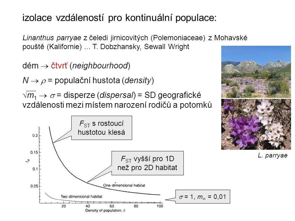 izolace vzdáleností pro kontinuální populace: Linanthus parryae z čeledi jirnicovitých (Polemoniaceae) z Mohavské pouště (Kalifornie)...