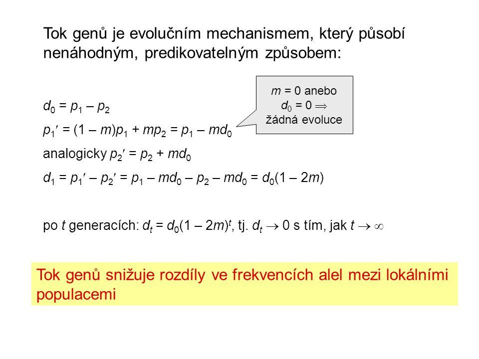 Tok genů je evolučním mechanismem, který působí nenáhodným, predikovatelným způsobem: d 0 = p 1 – p 2 p 1 = (1 – m)p 1 + mp 2 = p 1 – md 0 analogicky p 2 = p 2 + md 0 d 1 = p 1 – p 2 = p 1 – md 0 – p 2 – md 0 = d 0 (1 – 2m) po t generacích: d t = d 0 (1 – 2m) t, tj.