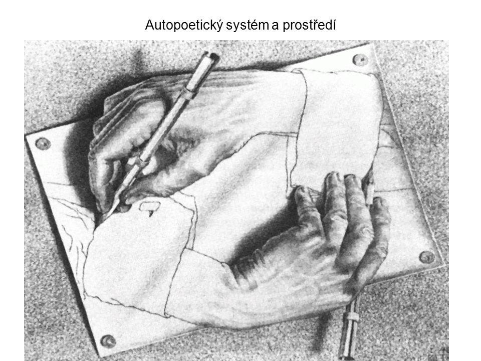 Autopoetický systém a prostředí