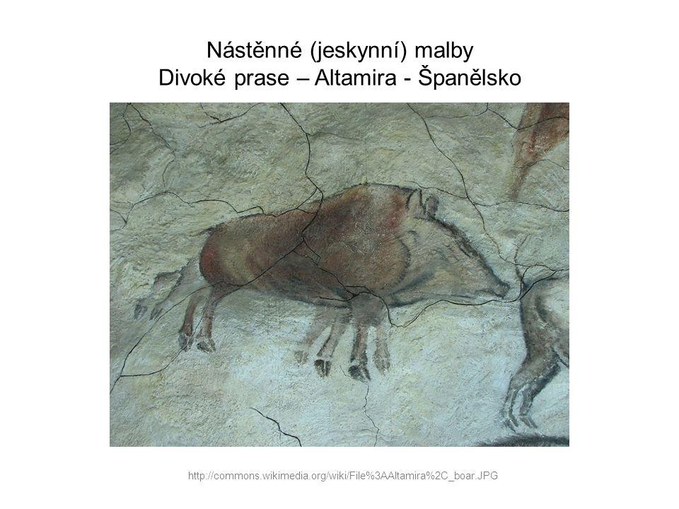 Nástěnné (jeskynní) malby Divoké prase – Altamira - Španělsko http://commons.wikimedia.org/wiki/File%3AAltamira%2C_boar.JPG