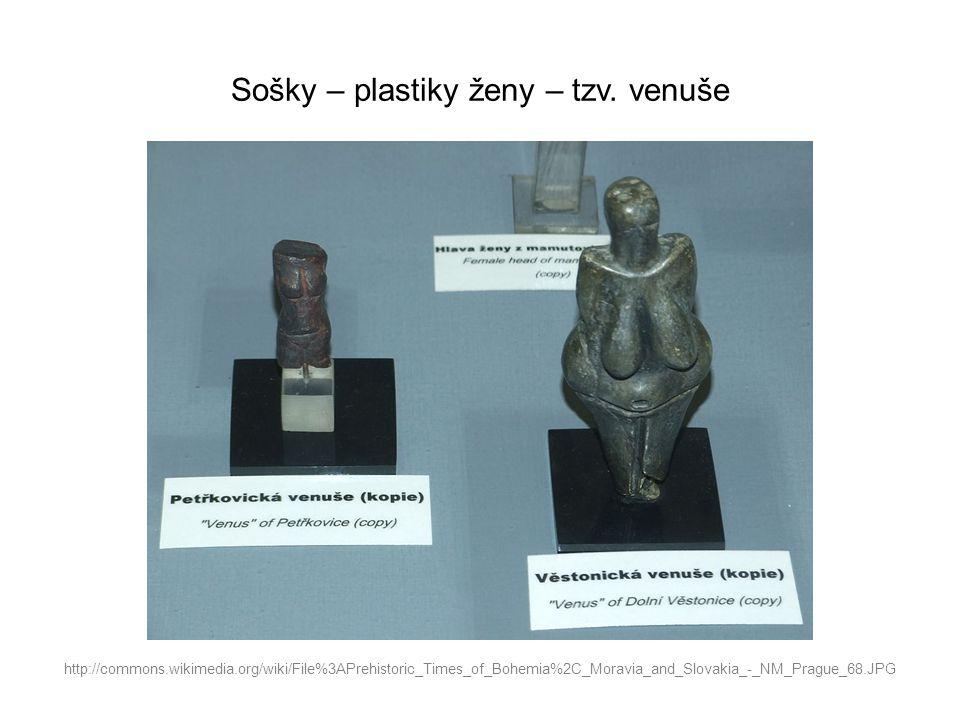 Sošky – plastiky ženy – tzv. venuše http://commons.wikimedia.org/wiki/File%3APrehistoric_Times_of_Bohemia%2C_Moravia_and_Slovakia_-_NM_Prague_68.JPG