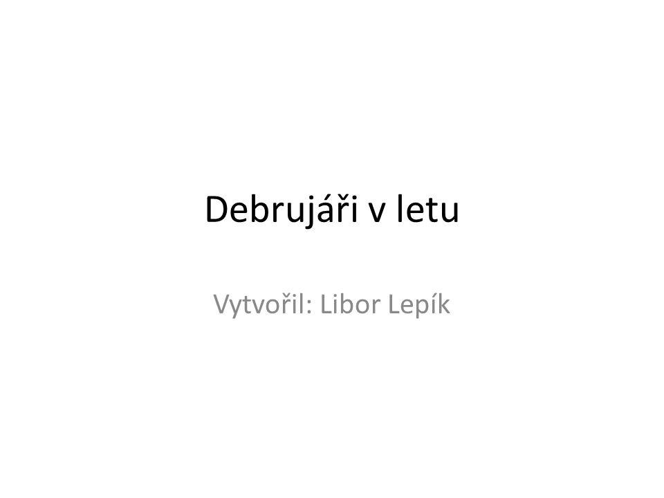 Debrujáři v letu Vytvořil: Libor Lepík
