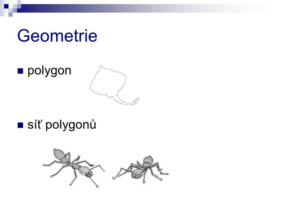 Geometrie polygon síť polygonů