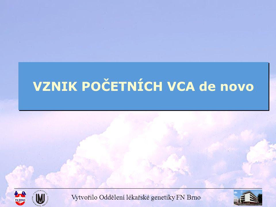 Vytvořilo Oddělení lékařské genetiky FN Brno VZNIK POČETNÍCH VCA de novo