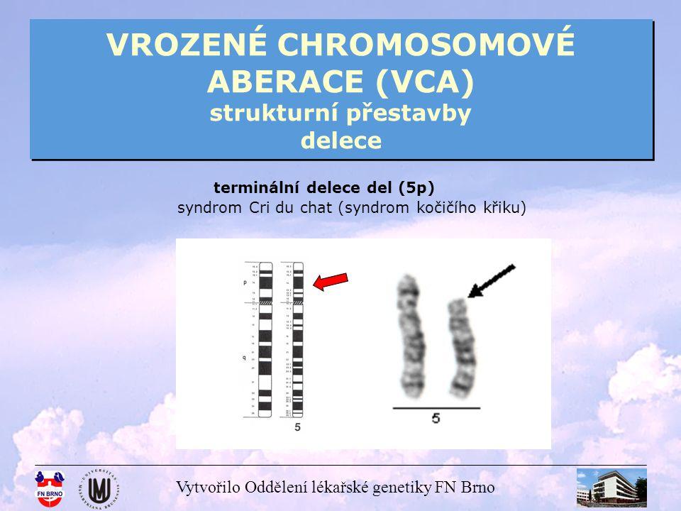 Vytvořilo Oddělení lékařské genetiky FN Brno VROZENÉ CHROMOSOMOVÉ ABERACE (VCA) strukturní přestavby delece terminální delece del (5p) syndrom Cri du
