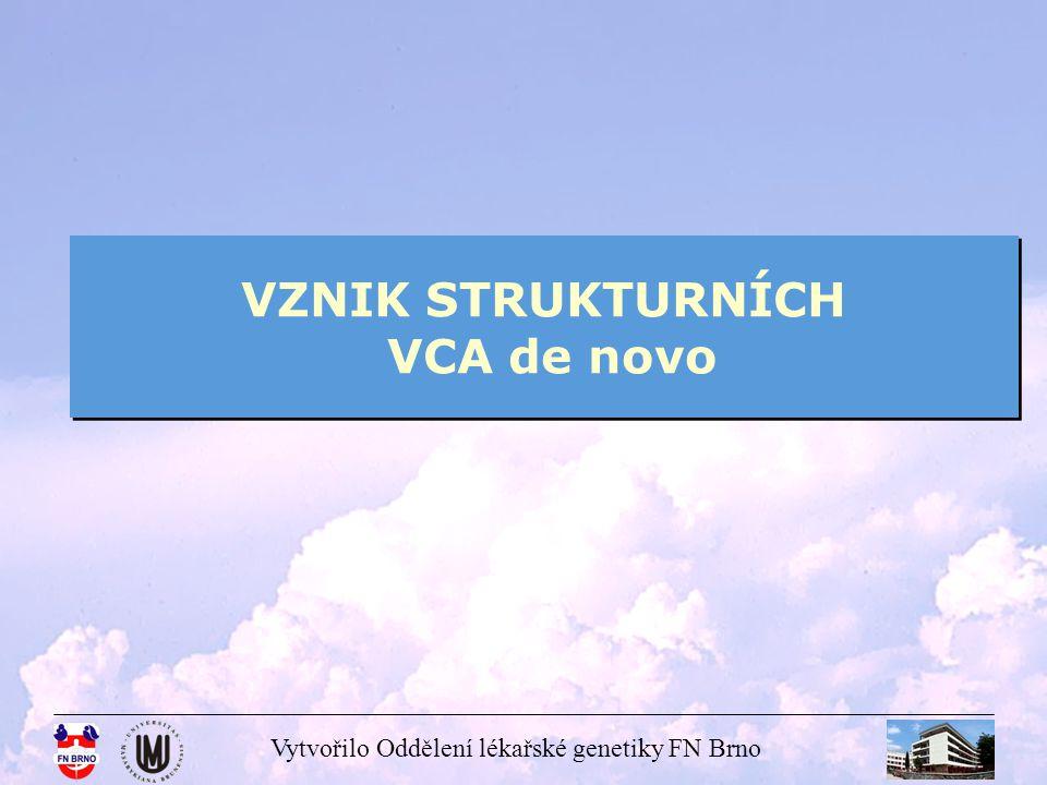 Vytvořilo Oddělení lékařské genetiky FN Brno VZNIK STRUKTURNÍCH VCA de novo