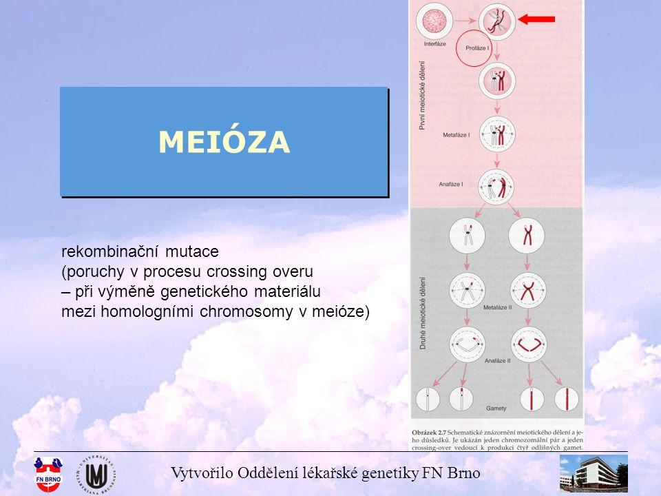 Vytvořilo Oddělení lékařské genetiky FN Brno MEIÓZA rekombinační mutace (poruchy v procesu crossing overu – při výměně genetického materiálu mezi homo