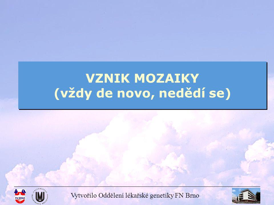 Vytvořilo Oddělení lékařské genetiky FN Brno VZNIK MOZAIKY (vždy de novo, nedědí se)