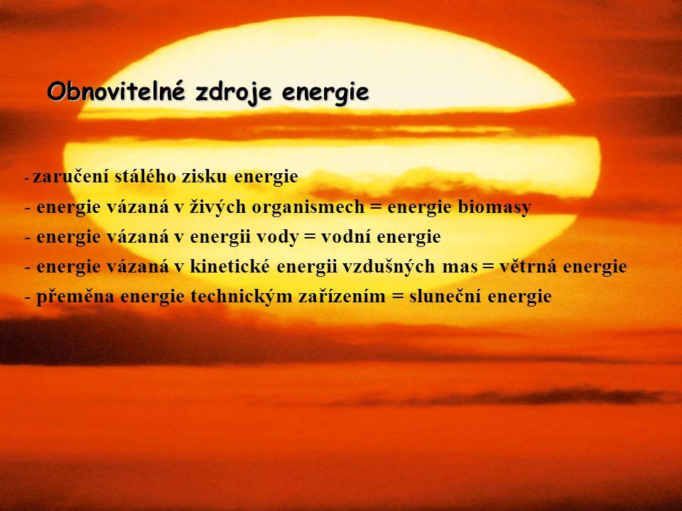 Obnovitelné zdroje energie - zaručení stálého zisku energie - energie vázaná v živých organismech = energie biomasy - energie vázaná v energii vody =