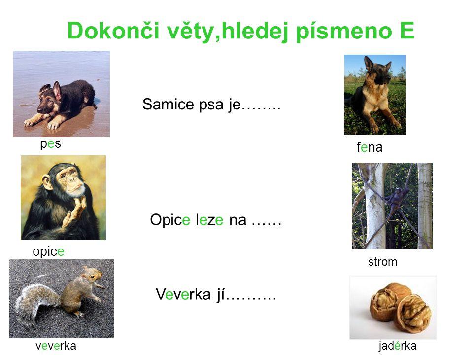 Dokonči věty,hledej písmeno E pes Samice psa je…….. opice Opice leze na …… veverka Veverka jí………. jadérka fena strom