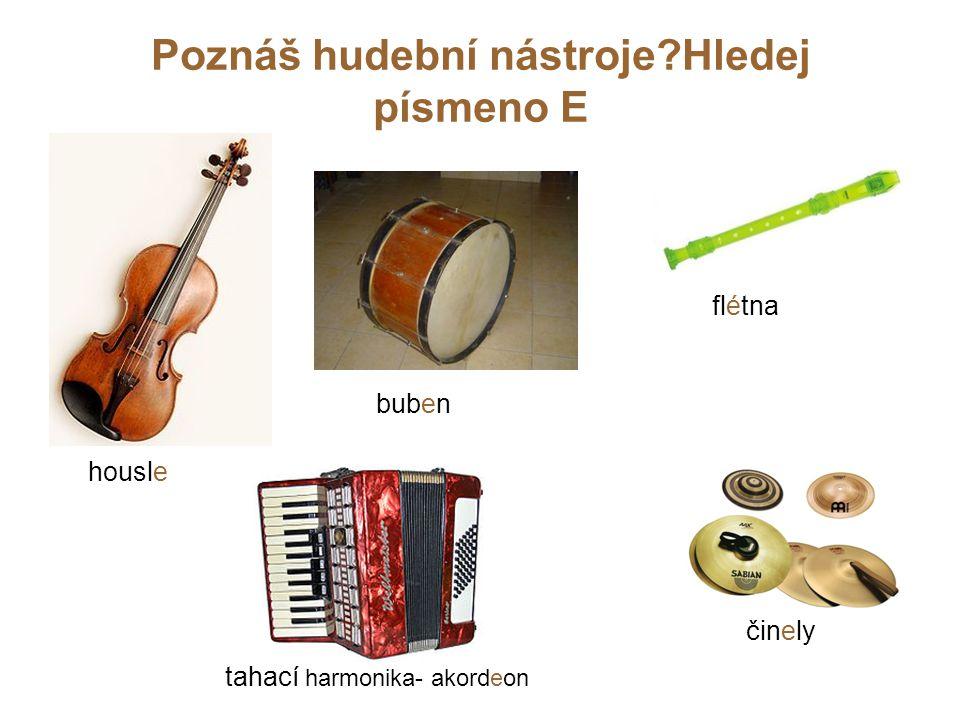 Poznáš hudební nástroje?Hledej písmeno E housle flétna buben činely tahací harmonika- akordeon