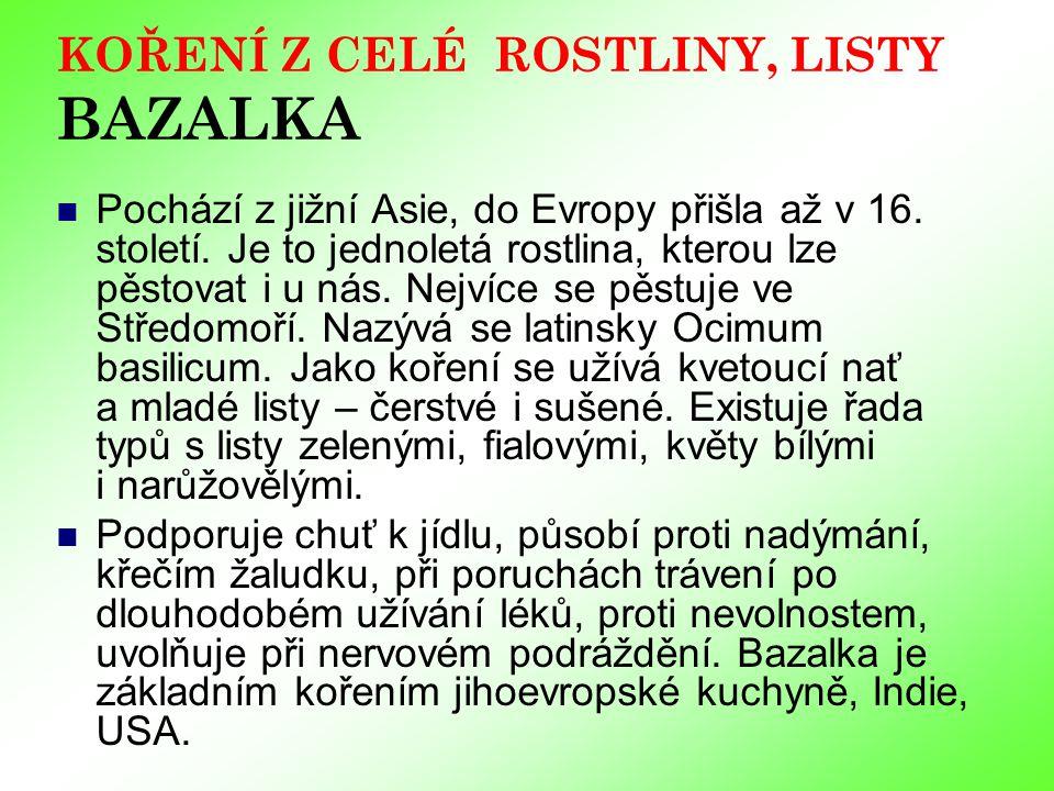 KOŘENÍ Z CELÉ ROSTLINY, LISTY BAZALKA Pochází z jižní Asie, do Evropy přišla až v 16.