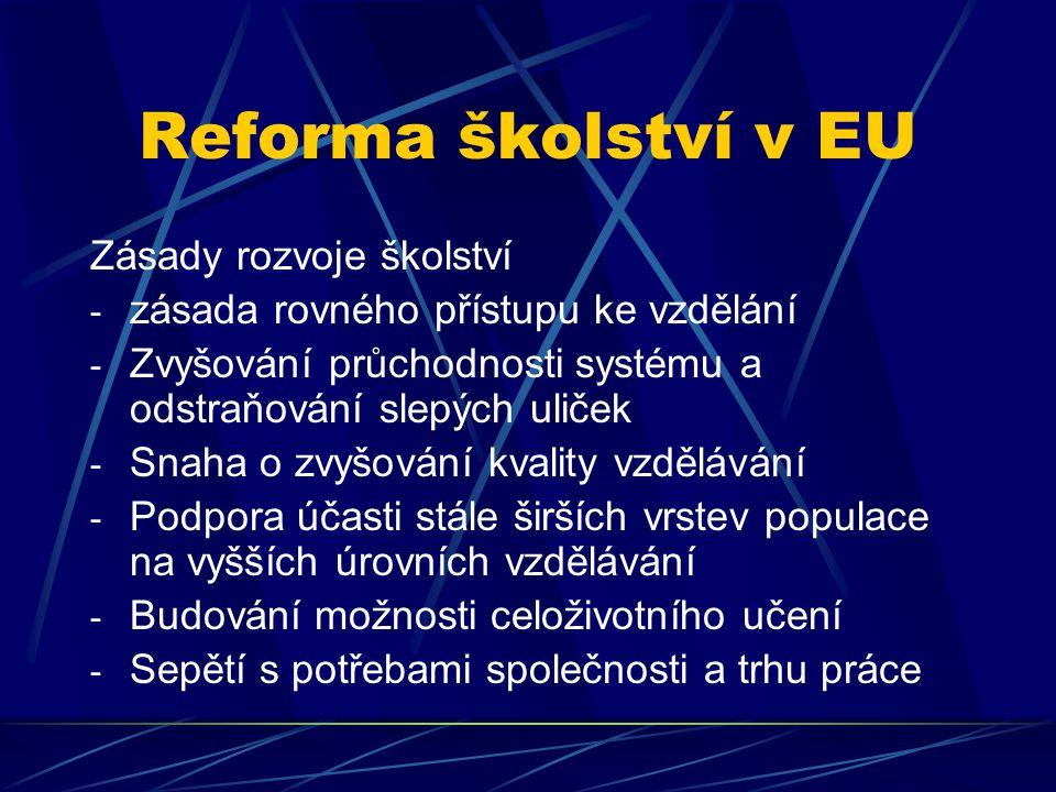 Reforma školství v EU Zásady rozvoje školství - zásada rovného přístupu ke vzdělání - Zvyšování průchodnosti systému a odstraňování slepých uliček - S