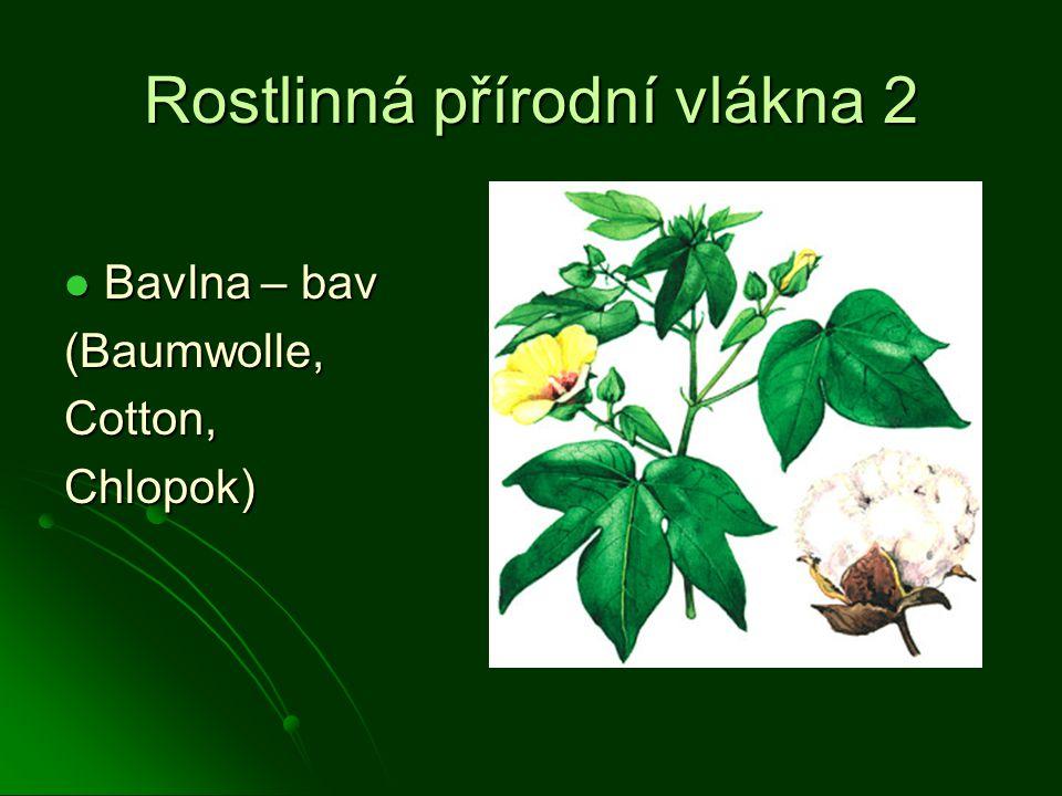 Rostlinná přírodní vlákna 2 Bavlna – bav Bavlna – bav(Baumwolle,Cotton,Chlopok)