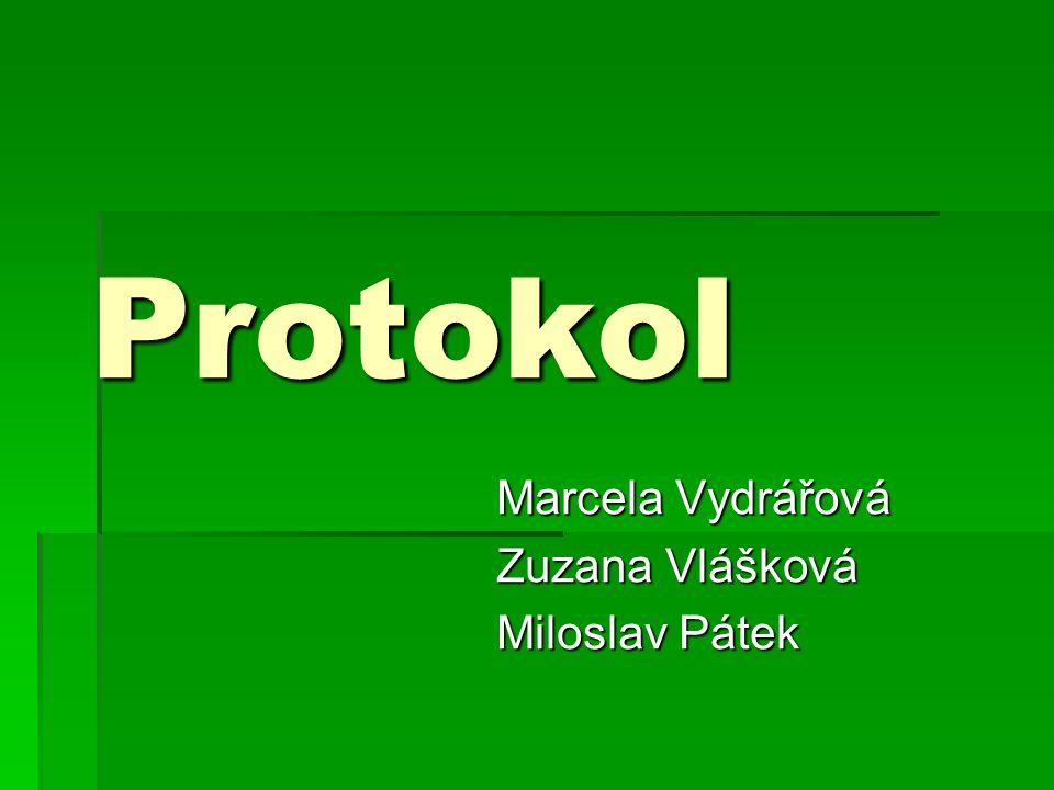 Protokol Marcela Vydrářová Zuzana Vlášková Miloslav Pátek