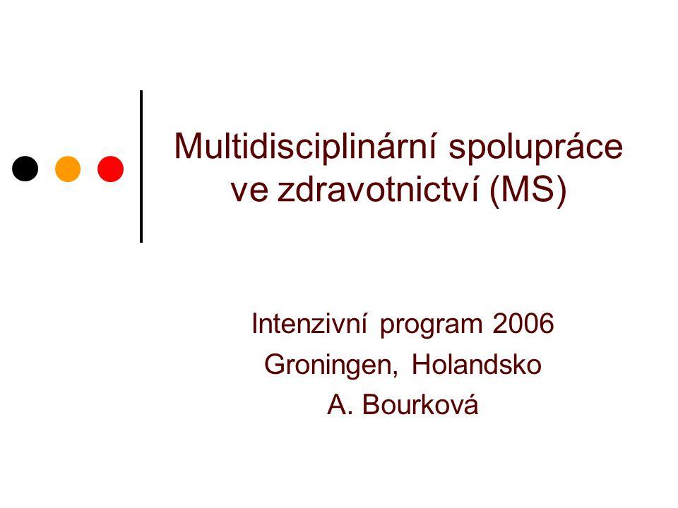 Multidisciplinární spolupráce ve zdravotnictví (MS) Intenzivní program 2006 Groningen, Holandsko A. Bourková