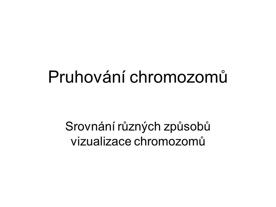 Srovnání různých způsobů vizualizace chromozomů Pruhování chromozomů