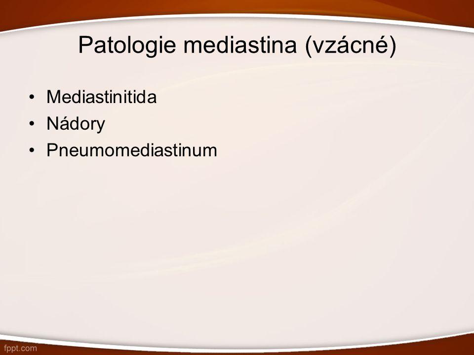 Patologie mediastina (vzácné) Mediastinitida Nádory Pneumomediastinum